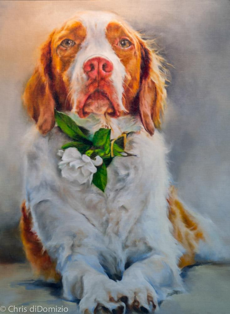 Kate bolia original Oil Painting_