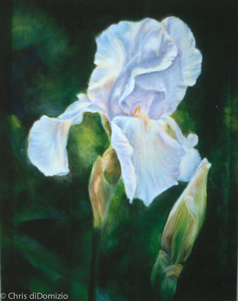 MaryAnn McCoy original oil painting flowers